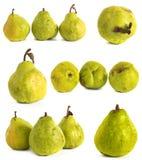 Peer op een witte achtergrond sappige heldergroene en gele peren op geïsoleerde achtergrond stock afbeeldingen