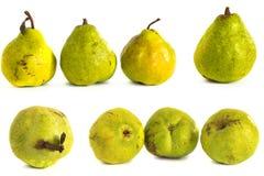 Peer op een witte achtergrond sappige heldergroene en gele peren op geïsoleerde achtergrond stock foto's