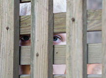 Peering Eyes Royalty Free Stock Photo