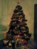 Pefrect julgran för familjtid arkivbild