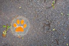 Pegada do cão ponto por ponto na terra imagens de stock royalty free