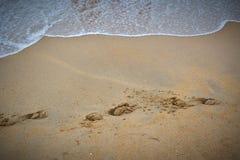 Pegada em uma praia fotografia de stock