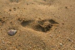 Pegada na areia Foto de Stock Royalty Free