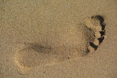 Pegada na areia Imagem de Stock