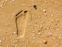 Pegada na areia Fotografia de Stock Royalty Free