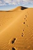 Pegada na duna de areia Fotos de Stock Royalty Free