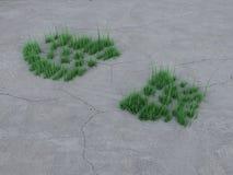 Pegada na pedra e na grama. Imagens de Stock