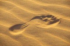 Pegada no deserto Fotografia de Stock