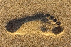 Pegada no fundo do sumário da areia Fotos de Stock