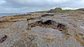 A pegada rara do dinossauro do tracksite sauropod-dominado do nam Brathairean de Rubha, irmãos aponta - a ilha de Skye video estoque