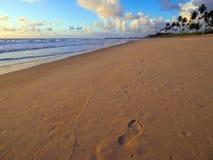 Pegadas da areia Imagem de Stock