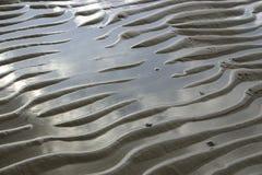 Pegadas das ondas e do pássaro de areia Imagens de Stock