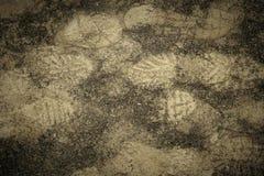 Pegadas de sapatas do esporte ou de botas da caminhada na lama e na areia na terra Vista superior fotografia de stock royalty free