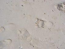 Pegadas desencapadas na areia Imagens de Stock
