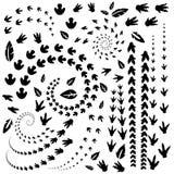 Pegadas do dinossauro Ilustração do vetor ilustração stock
