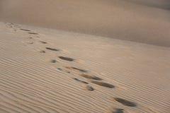 Pegadas em dunas de areia, texturas diferentes, Maspalomas, Gran Canaria, Espanha Fotos de Stock Royalty Free