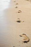 Pegadas humanas na areia da praia Traços na praia de um homem ou de uma mulher Passos na praia no verão Foto de Stock Royalty Free