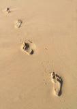 Pegadas na areia Foto de Stock Royalty Free
