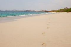 Pegadas na areia de Costa-Rica. imagens de stock royalty free