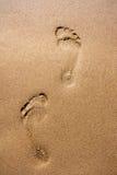 Pegadas na areia molhada Fotos de Stock Royalty Free