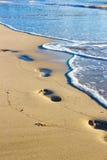 Pegadas na areia molhada Fotografia de Stock