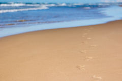 Pegadas na areia na praia que conduz para o mar Foto de Stock Royalty Free