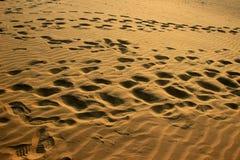 Pegadas na areia no por do sol Fotografia de Stock