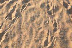 Pegadas na areia traços Deserto fotografia de stock