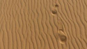 Pegadas na duna de areia, grões de areia, Corralejo, parque natural Fuerteventura Fotos de Stock Royalty Free