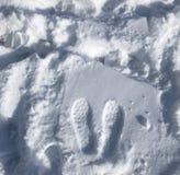 Pegadas na neve imagem de stock