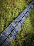 Pegadas na passagem de madeira Imagem de Stock
