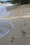 Pegadas na praia Fotografia de Stock