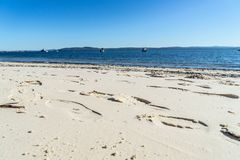 Pegadas na praia arenosa imagem de stock