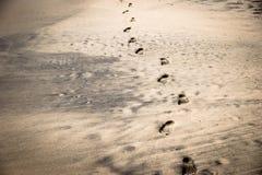 Pegadas na praia preta e amarela da areia Fotos de Stock Royalty Free