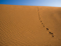 Pegadas nas dunas Fotografia de Stock
