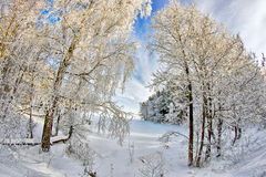 Pegadas no lago snow Foto de Stock Royalty Free