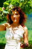 Pegarando os fowers bonitos da árvore de Linden no dia de verão brilhante Contato de olho Fotografia de Stock