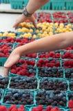 Pegarar frutifica pelo quarto no mercado do fazendeiro Foto de Stock Royalty Free