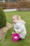 Pegare ovos de easter Imagem de Stock