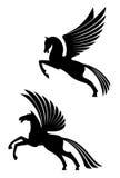 Pegaso ha traversato i cavalli volando Fotografia Stock