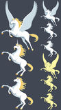 Pegaso Unicorn Stallion illustrazione vettoriale