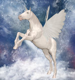 Pegasus. A legendary animal: a beautiful pegasus over the clouds Royalty Free Stock Image