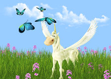 Pegasus. In the meadow in the sunny day Stock Photography