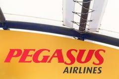 Pegasus Airlines logo na ścianie Obrazy Royalty Free