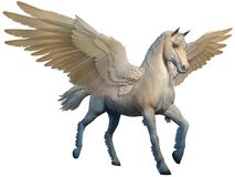 Pegasus 3D illustration. White pegasus with outstretched wings 3D illustration Royalty Free Stock Photography