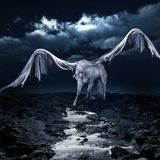 Pegasus drinking from a stream Stock Photography