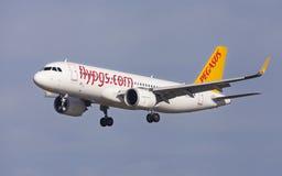 Pegasus flygbuss A320neo Royaltyfri Fotografi