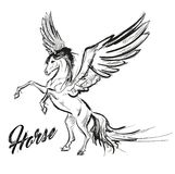 Pegasus greek mythological creature. Legendary beast concept drawing. Heraldry figure. Vintage tattoo design. Sketch isolated on a white background Royalty Free Stock Photography