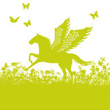 Pegasus or horse with wings Stock Photos