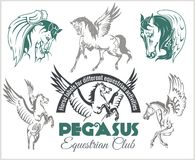 Pegasus and horses vintage labels, badges Stock Image